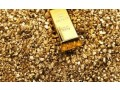 97gold-nuggets-for-sale27715451704-at-great-price-in-swedensaudi-arabia-small-0