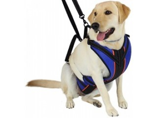 Dog leash | Paw Five SWIFT-2™ Leash